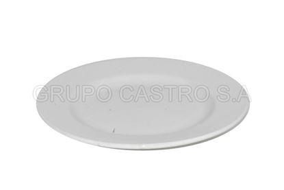 """Foto de Plato porcelana plano blanco 8.5"""""""
